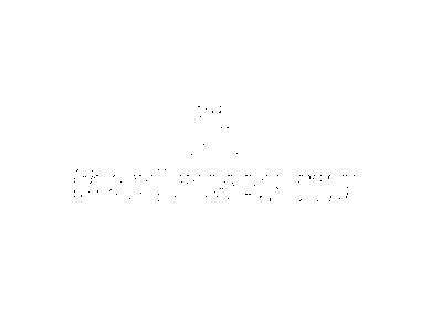 logo_fotoromanek_03_03